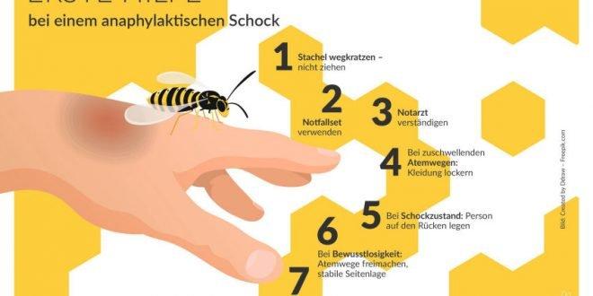 Allergischer Schock bei Insektenstich