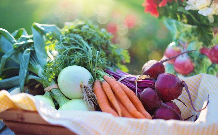 Ernährung - 83% setzen auf gesunde Produkte