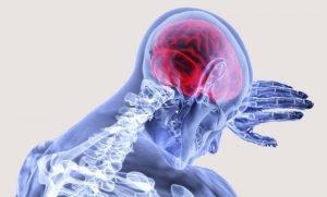 Belohnungssystem im Gehirn aktivieren