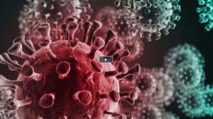 COVID-19 - Was im Körper passiert