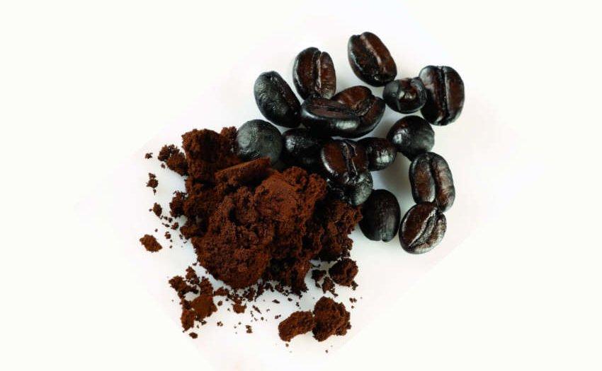 Kaffeekohle-Darmerkrankungen pflanzlich behandeln