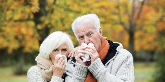 Immunsystem - Immunabwehr bei Senioren stärken