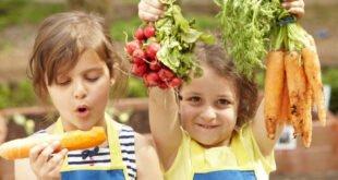 Ernährungs- und Bewegungsstudie der EDEKA Stiftung